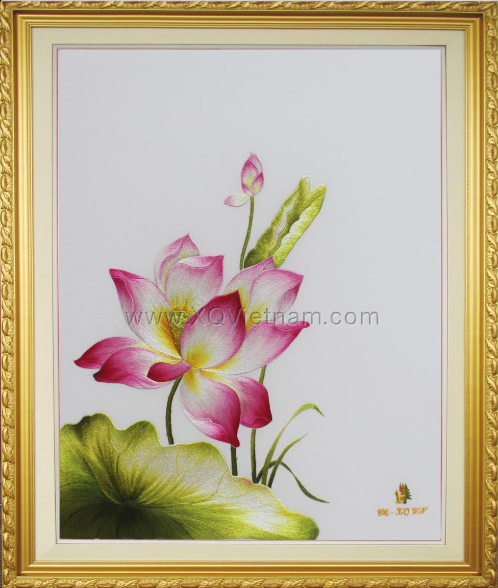 Vietnamese Lotus 51